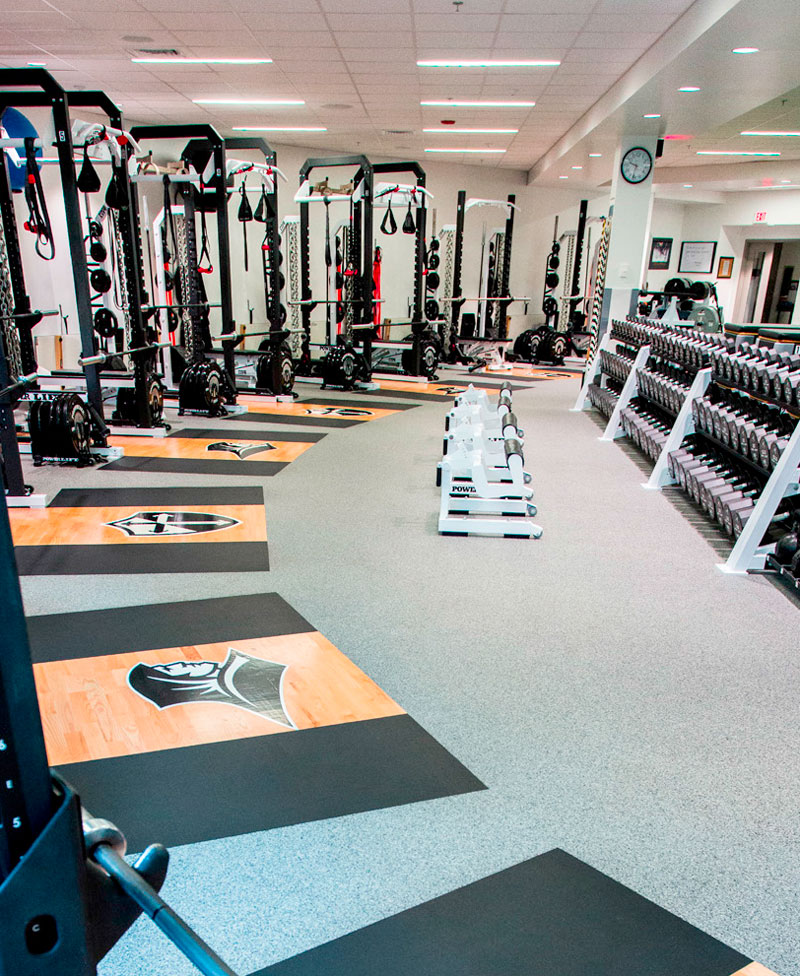 tile weight room athletics floors flooring rolled dhfit zebra product